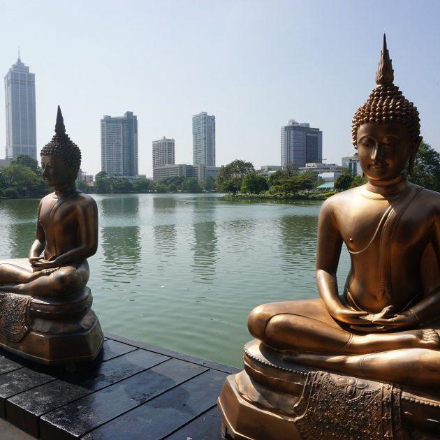 Sri Lanka Summer Delight