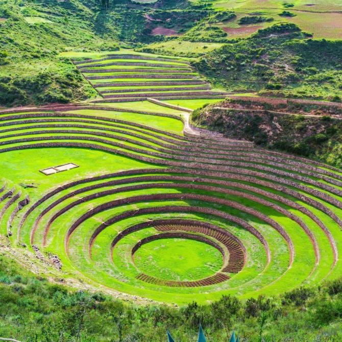Classic Puru_Galapagos_Morena-Inca-Cusco-Peru