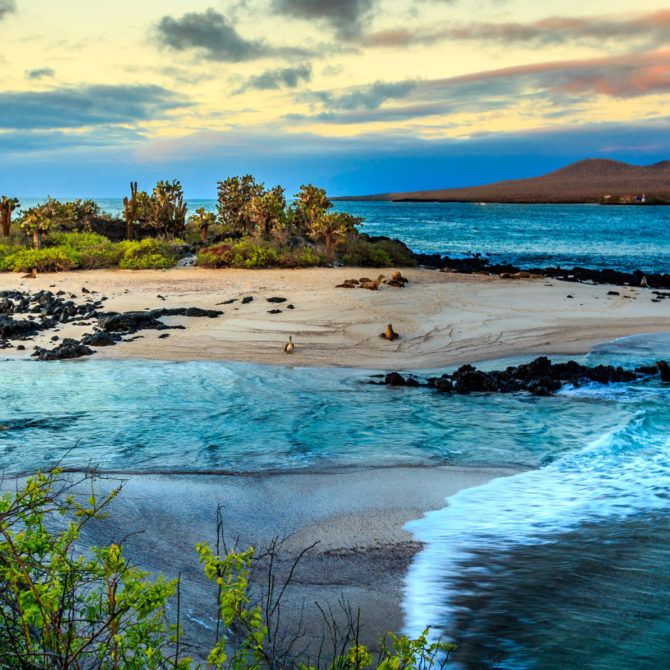 Indulgent Luxury Galapagos_5